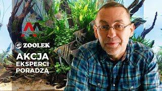 Zoolek i Akademia Magazynu Akwarium