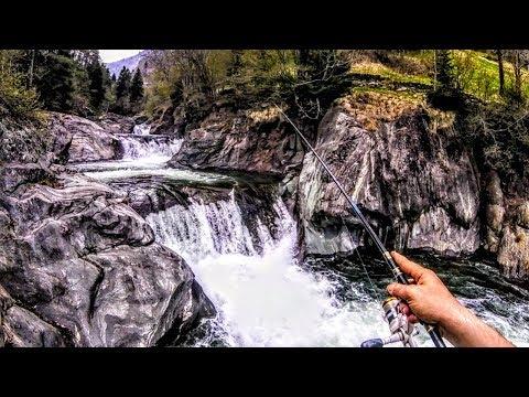 Aliexpress che pesca in contatto