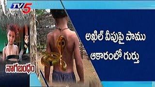 ఈ చిన్నారిది పున్నమి నాగులో చిరంజీవి పరిస్థితి !!   Snake Haunts Boy   Nijam   TV5 News