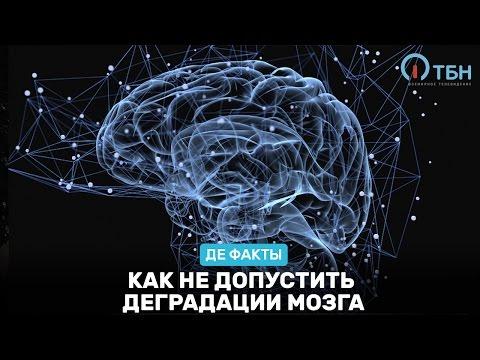Как не допустить деградации мозга.  «Де факты от де Юры»