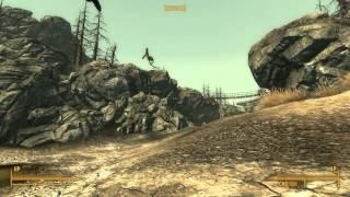 Fallout 3 bugs