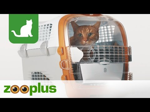 Transportbox Pet Cargo Cabrio