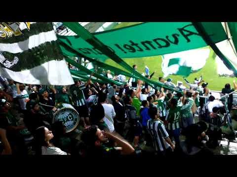 """Hoje eu vim te apoiar"" Barra: Curva 1909 • Club: Coritiba"