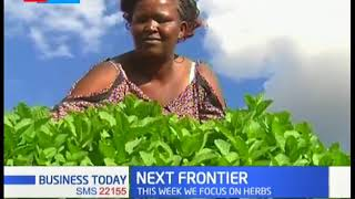 Kenya is a key source market for herbs | THE NEXT FRONTIER