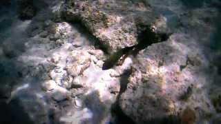 preview picture of video 'lagon près de Saint-François'