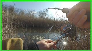Рыбалка когда нерестится щука в карелии