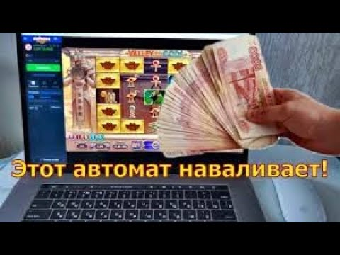 Forexbrothers. net contact