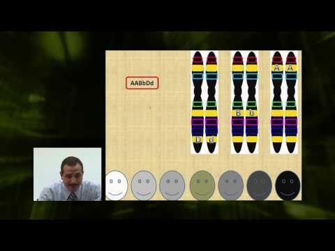 الأحياء - الصف الثانى عشر - الدرس رقم (19) الجينات المتعددة