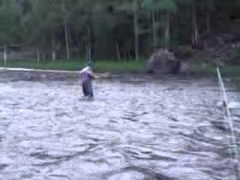 Video che pesca da reti sul lago