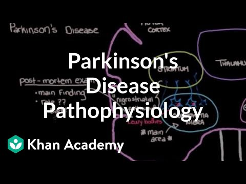 Putting It All Together Pathophysiology Of Parkinson S Disease Video Khan Academy