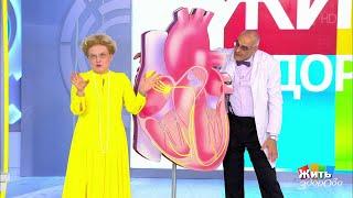 Сердечные блокады: атриовентрикулярная блокада. Жить здорово! 04.07.2019