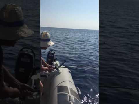 I canali su pesca per aspettare in linea