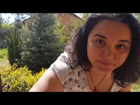 Refacerea țesutului conjunctiv în organism
