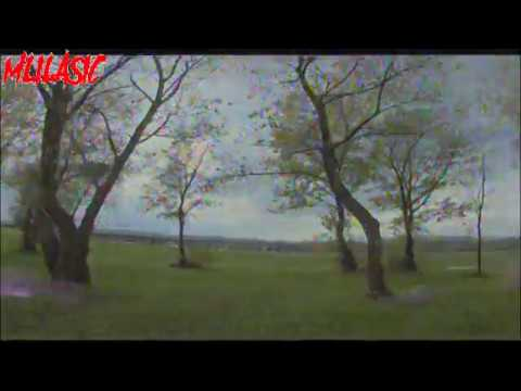 RunCam Split 2 - maiden flight DVR video - AIO 1080P/60fps Recording & WDR FPV Cam - Banggood