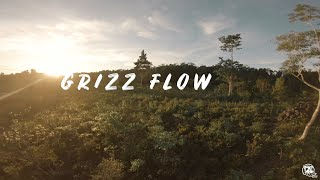 THIS IS HOW I FREESTYLE ~ GRIZZFLOW   FPV FREESTYLE DRONE