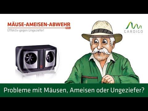 Gardigo Mäuse-Ameisen-Abwehr DUAL