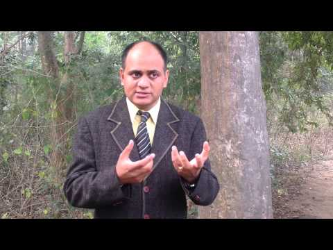 , title : 'Terminalia arjuna - Benefits, Uses, Dosage & Side Effects'