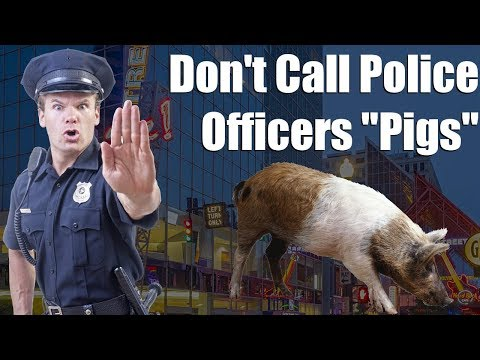 Don't Call Police Officers Pigs