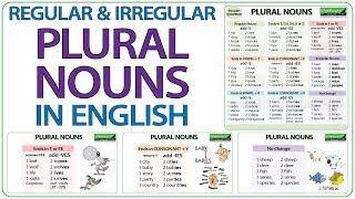 Plural Nouns in English - Regular & Irregular Plurals