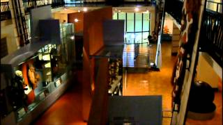 preview picture of video 'A Visit to the Horniman Museum in Forest Hill, London'