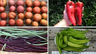 September Gardening Update and Tour - Still Lots of Harvesting To Do