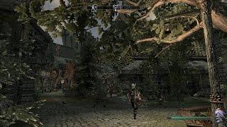 #10/TES V:Skyrim/Новый Солитьюд