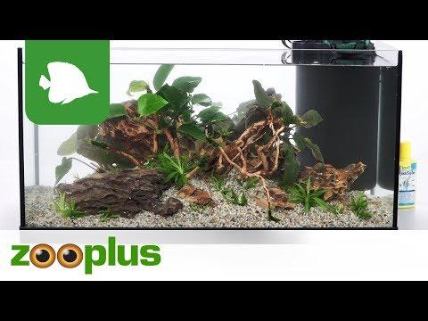 Aquarium Set 54 L - Aquarium Design - Drachenstein und Rote Moorwurzel Nr.1 | zooplus