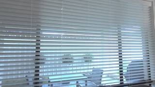 Creative Blinds 50mm Venetians Fashionline Brand