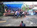 Kesenian Jaranan Pegon Buto Cursari Terbaru 2018 Turonggo Seto Benculuk Cluring Kesurupan