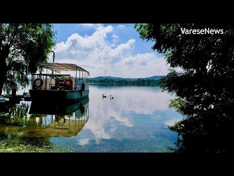 Il Lago di Varese protagonista alla Biennale di Venezia