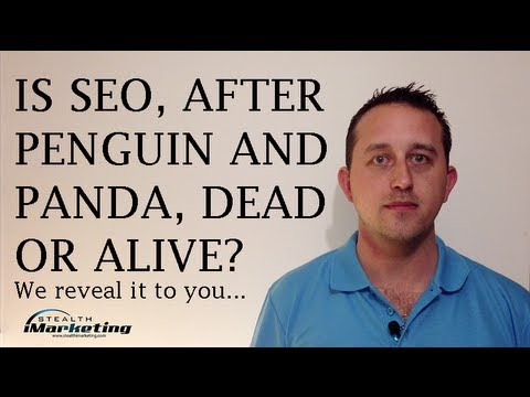 Brisbane SEO Experts Answer If Search Engine Optimization Is Dead Or Alive... And Why