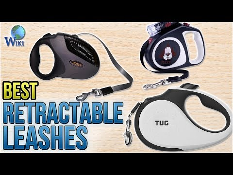 10 Best Retractable Leashes 2018