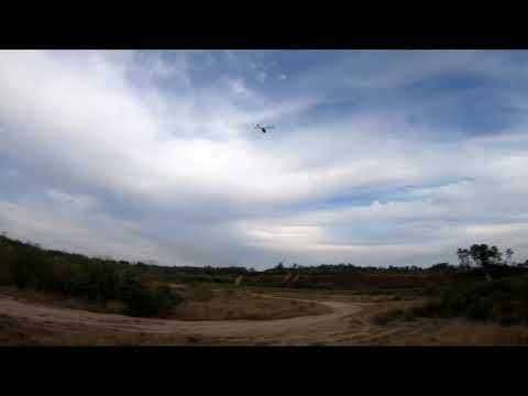 RJX 520mm Heli MainBlades Flight Test