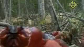 Anvil - March of the Crabs