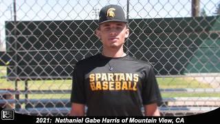 2021 Nathaniel Gabe Harris Speedy, Athletic Lefty Outfielder Baseball Skills Video