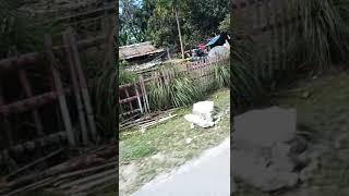 preview picture of video 'Dampak Gempa Palu Sigi Donggala(Desa Lombonga Kec. Balaesang Kab. Donggala)'