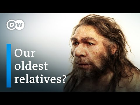 Who were the Neanderthals?   DW Documentary