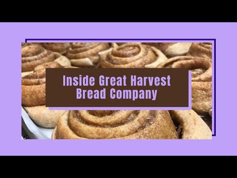 A Look Inside Great Harvest Bakery