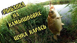 Рыбалка и походы в омской области