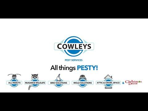 Cowleys Recruitment Video