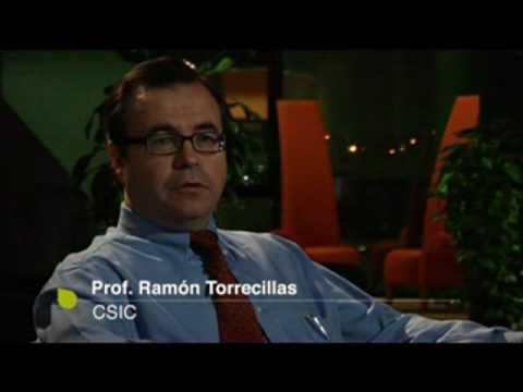 Nanocompuestos estructurales de cerámica para aplicaciones funcionales de alta gama