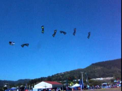 מופע עפיפונים מסונכרן - מדהים!