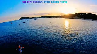 DJI FPV SYSTEM WITH CADDX VISTA
