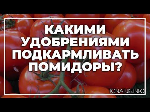Какими удобрениями подкармливать помидоры? | toNature.Info