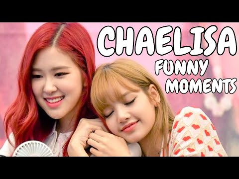 Download Blackpink Funny Moments Best 2018 By Funny Moments