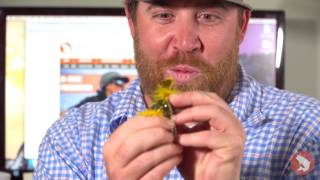 Trouts Fly Fishing: Five Flies for June