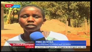 Zilizala Viiwanjani: Mbio za nyika kuandaliwa nchini Uganda