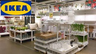 IKEA HOME DECOR DECORATIVE ACCESSORIES PLANTS POTS VASES SHOP WITH ME SHOPPING STORE WALK THROUGH