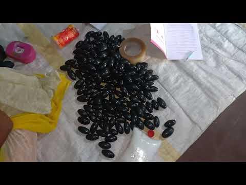 Small Narmadeshwar Shivling