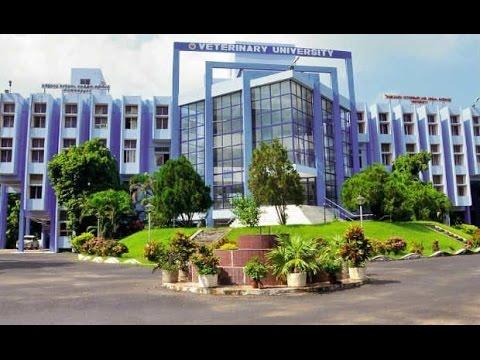 TamilNadu Veterinary and Animal Sciences University video cover1